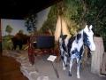 Plains Indian Exhibit